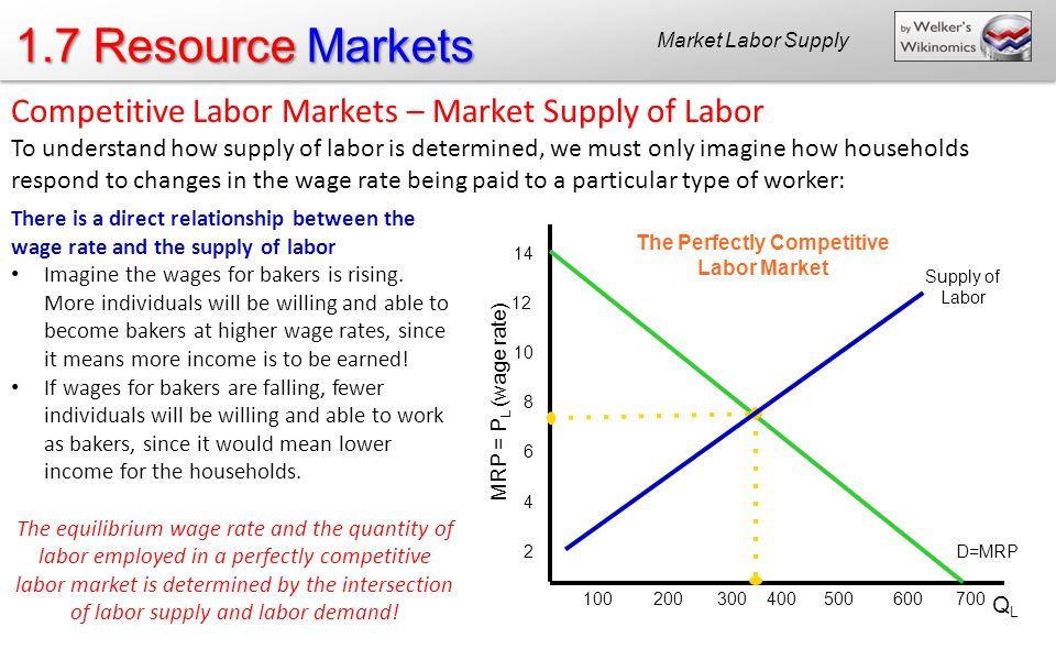 The Perfectly Competitive Labor Market