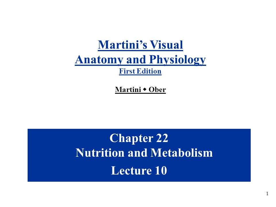 Anatomy and Physiology Chapter 22 Nutrition and Metabolism - ppt ...