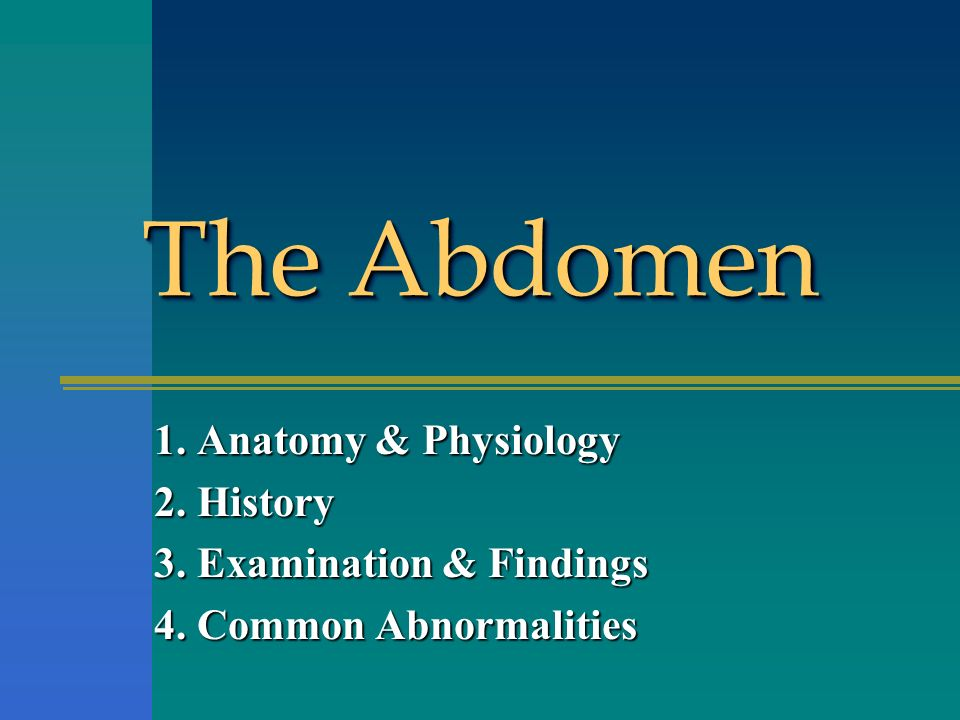 The Abdomen 1. Anatomy & Physiology 2. History - ppt video online ...