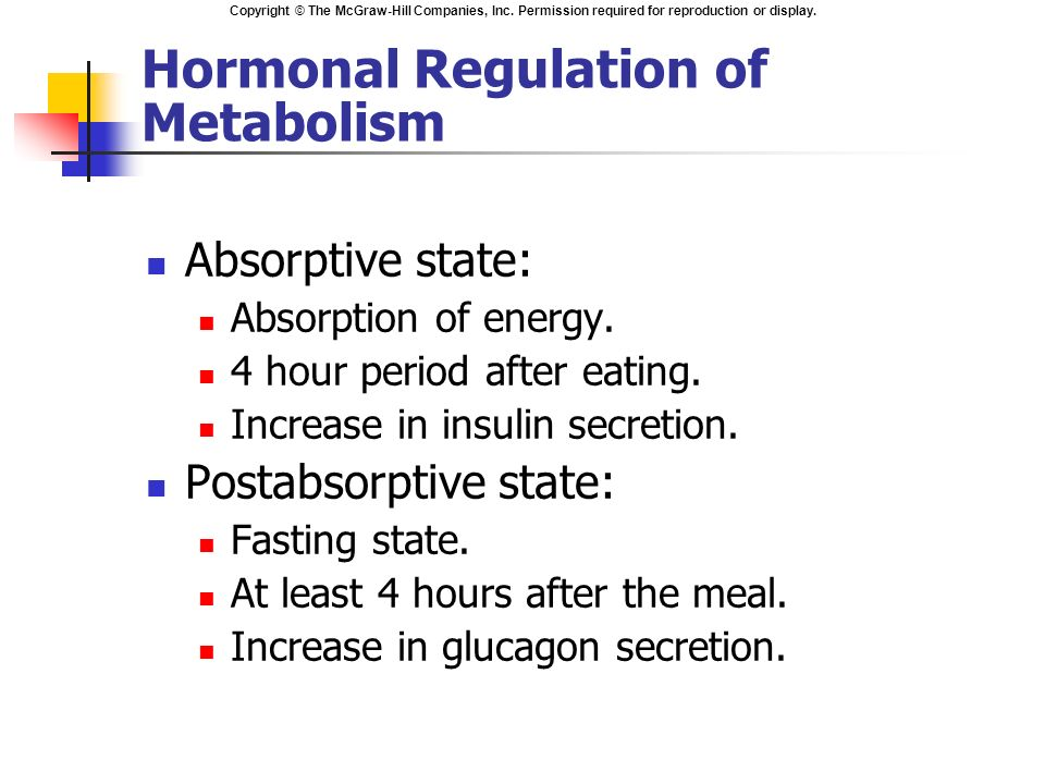 What is Hormone Metabolism?
