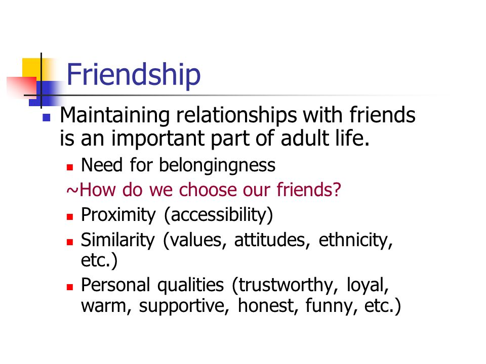 Characteristics of Friendship – What It Takes to Be a True Friend