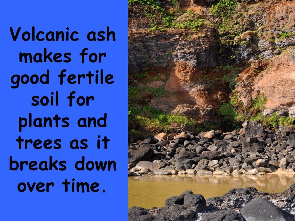 fertile soil volcano - photo #40