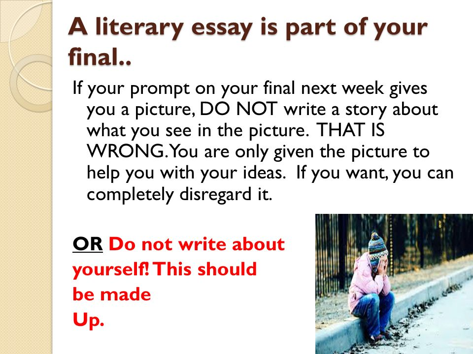 liturature essay