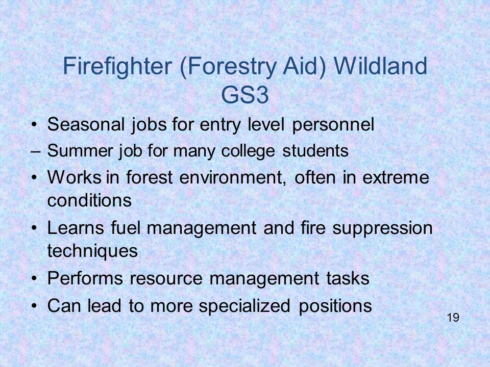 Firefighter (Forestry Aid) Wildland GS3