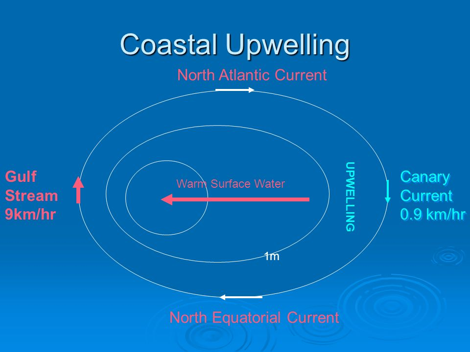 Coastal Upwelling North Atlantic Current Gulf Stream 9km/hr Canary