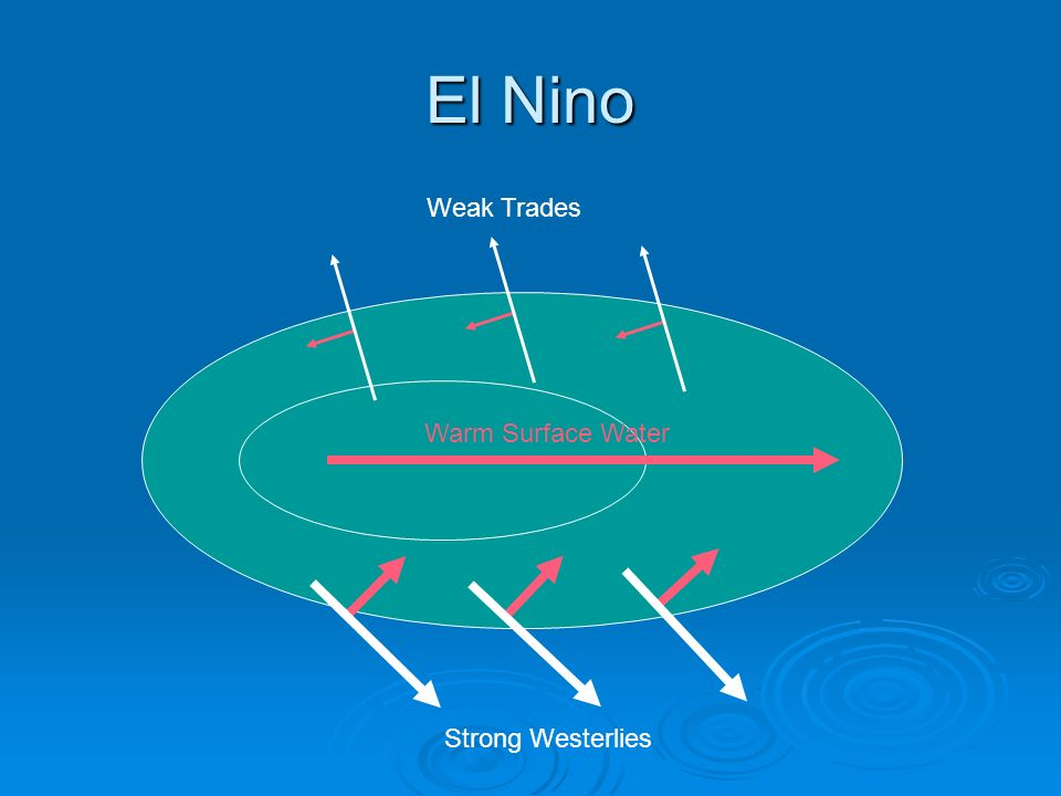 El Nino Weak Trades Warm Surface Water Strong Westerlies