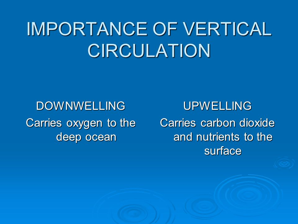 IMPORTANCE OF VERTICAL CIRCULATION