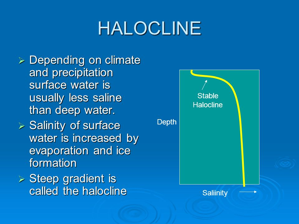 HALOCLINE Depending on climate and precipitation surface water is usually less saline than deep water.