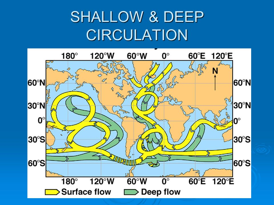 SHALLOW & DEEP CIRCULATION