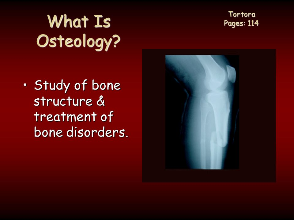 What is the study of diseases