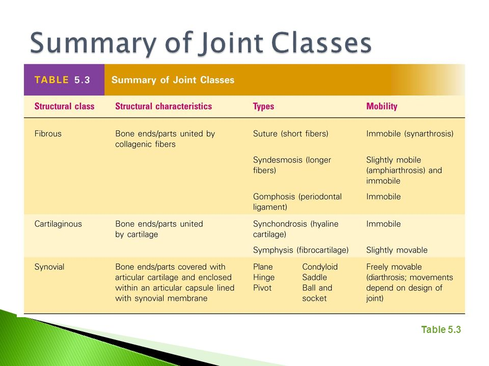 Summary of Joint Classes