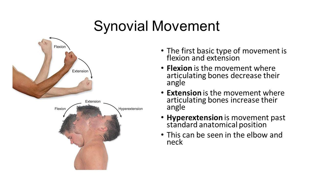 Similiar Flexion Body Movement Keywords