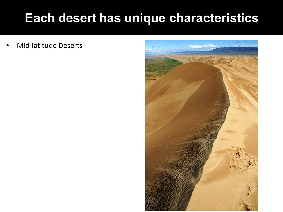CHAPTER 21: DESERTS AND WIND - ppt video online download
