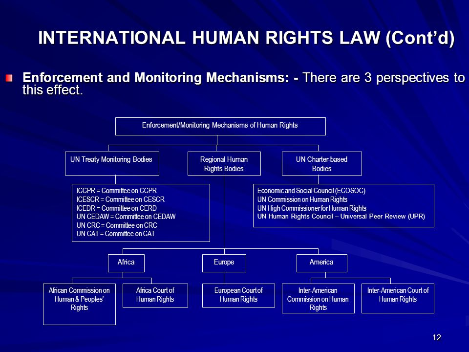 OVERVIEW OF THE GLOBAL PRACTICE AND PROMOTION OF HUMAN RIGHTS BY PROF