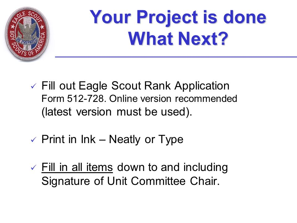 eagle scout project application pdf