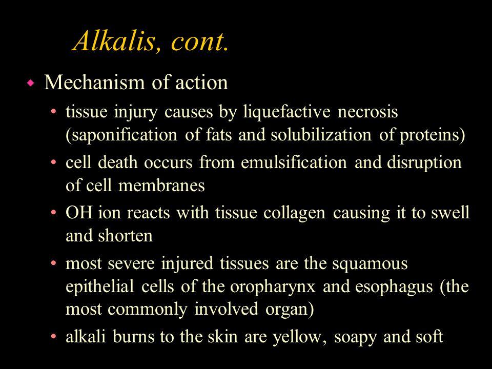 Alkalis, cont. Mechanism of action
