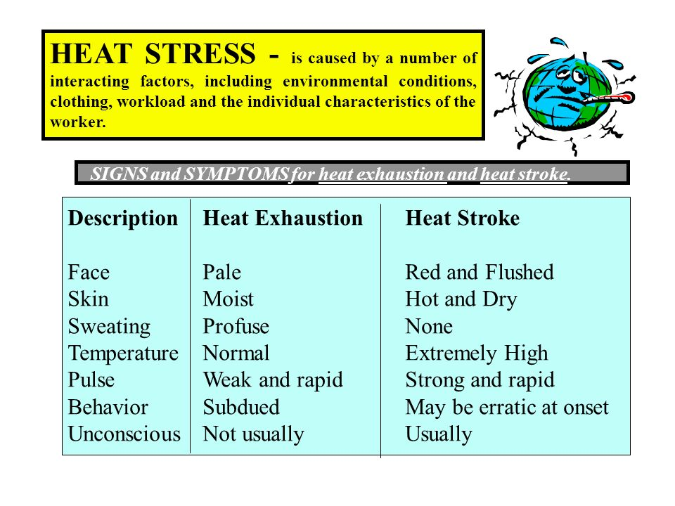 HEAT STRESS - is caused by a number of interacting factors, including environmental conditions, clothing, workload and the individual characteristics of the worker.