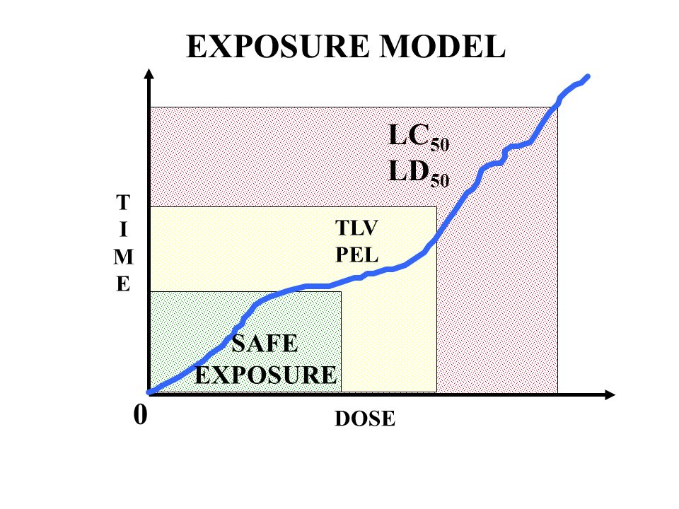 EXPOSURE MODEL LC50 LD50 T I M E TLV PEL SAFE EXPOSURE DOSE 88 88