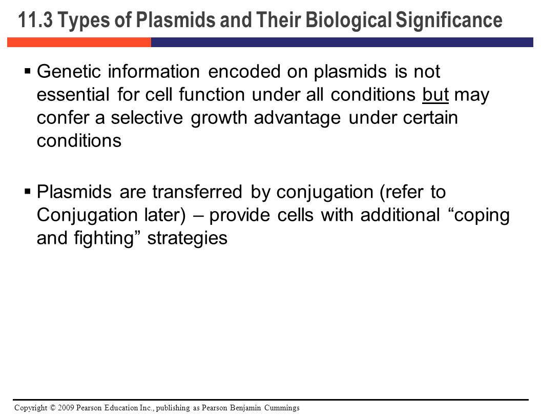 characteristics of plasmids and bacteria Replication ofplasmids in gram-negative bacteria  colel and related plasmids  provide their host with newphenotypic characteristics (for.