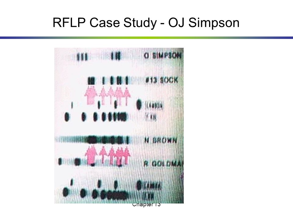 RFLP Case Study - OJ Simpson