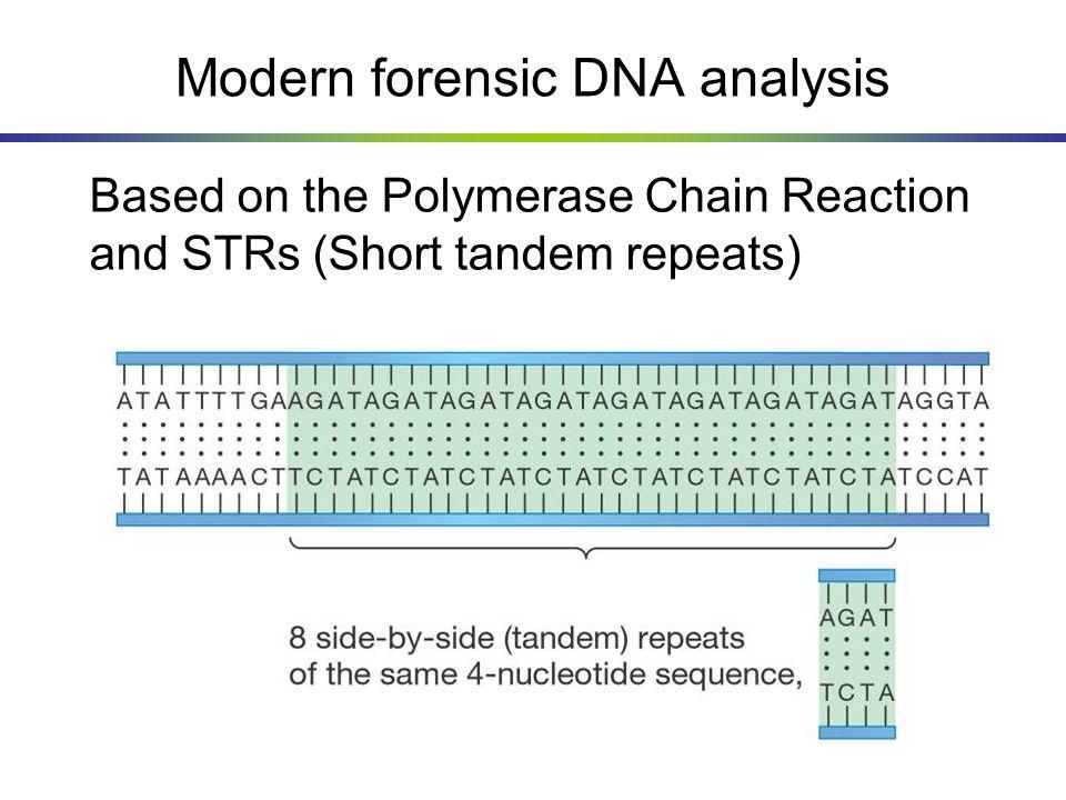 Modern forensic DNA analysis