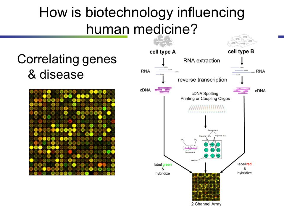 How is biotechnology influencing human medicine