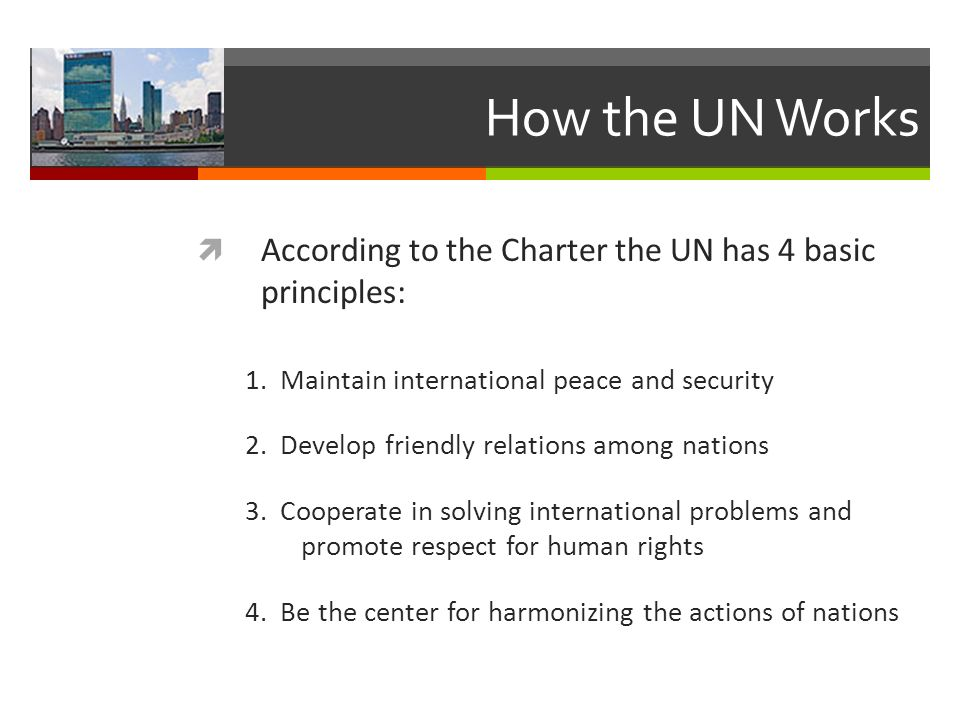 How the UN Works According to the Charter the UN has 4 basic principles: 1. Maintain international peace and security.