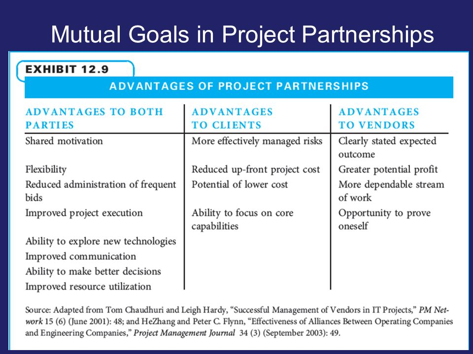 Mutual Goals in Project Partnerships