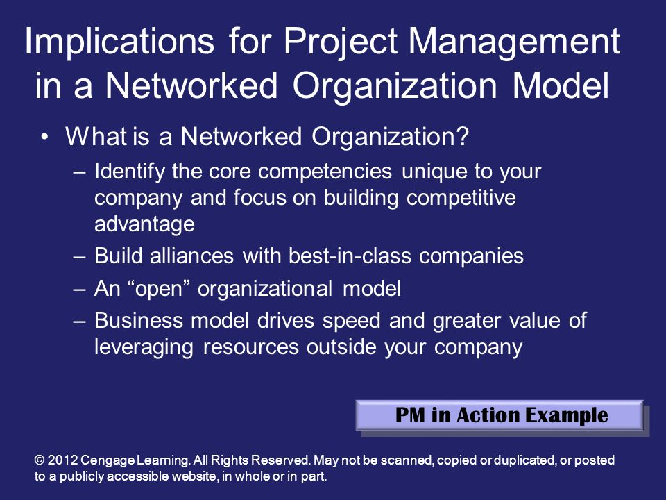 Implications for Project Management in a Networked Organization Model