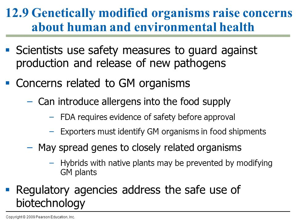 12.9 Genetically modified organisms raise concerns about human and environmental health