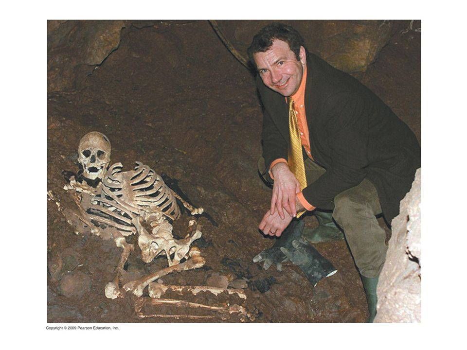 Figure 12.15B Cheddar Man and his modern-day descendant.