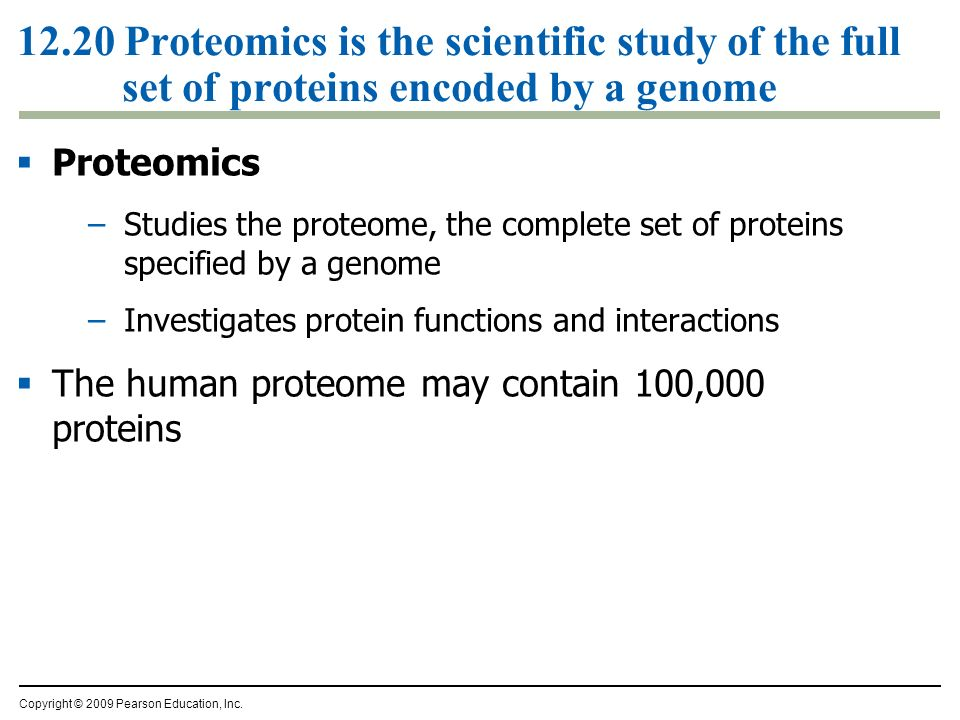 12.20 Proteomics is the scientific study of the full set of proteins encoded by a genome