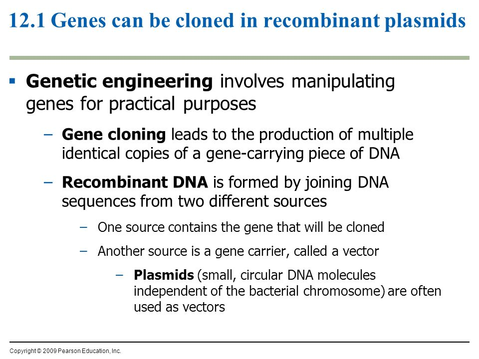 12.1 Genes can be cloned in recombinant plasmids