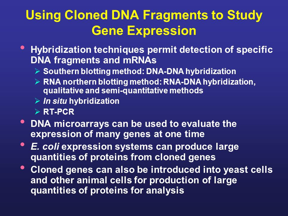 a study of gene one We've discovered a way to greatly improve the accuracy of gene-editing technology by replacing the natural guide molecule it uses with a synthetic one called a bridged nucleic acid, or bna, said basil hubbard, canada research chair in molecular therapeutics and an assistant professor in the u of a's.