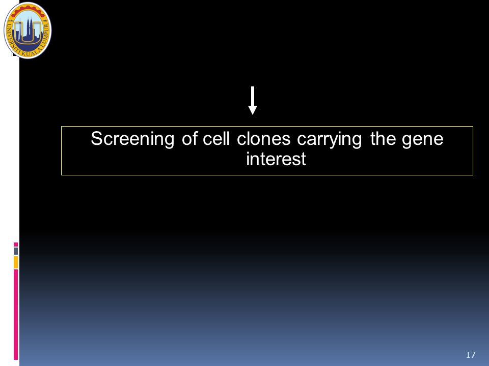 Screening of cell clones carrying the gene interest