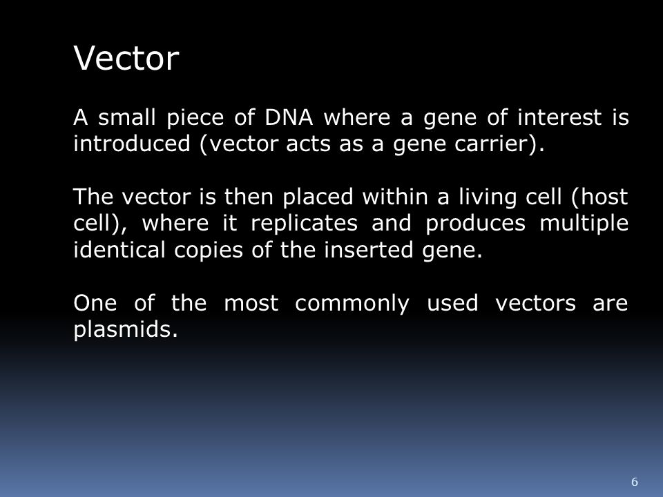 Vector A small piece of DNA where a gene of interest is introduced (vector acts as a gene carrier).