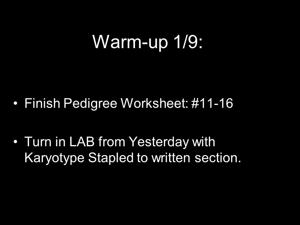 Warm-up 1/9: Finish Pedigree Worksheet: #11-16
