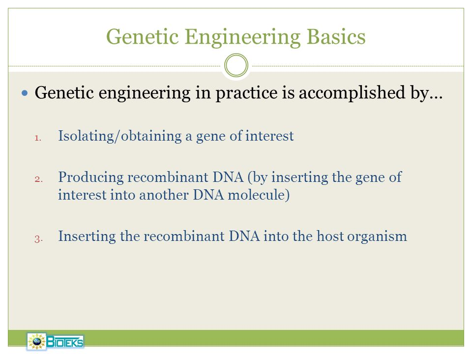 Genetic Engineering Basics