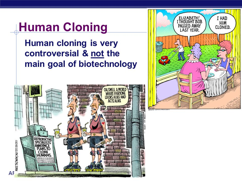 the controversy surrounding human cloning Despite ethical questions surrounding an american couple's recent  guidance  of the controversial human cloning advocate panayiotis zavos.
