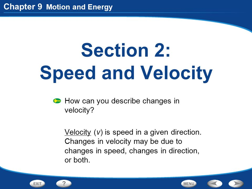 Section 2: Speed and Velocity