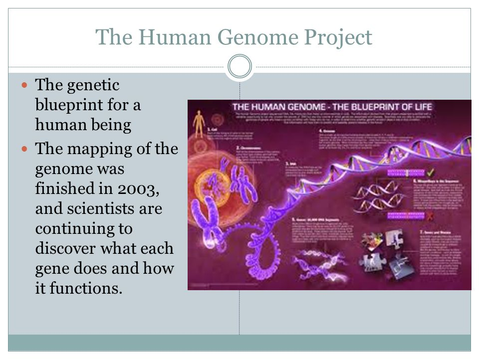 a study of the human genome project
