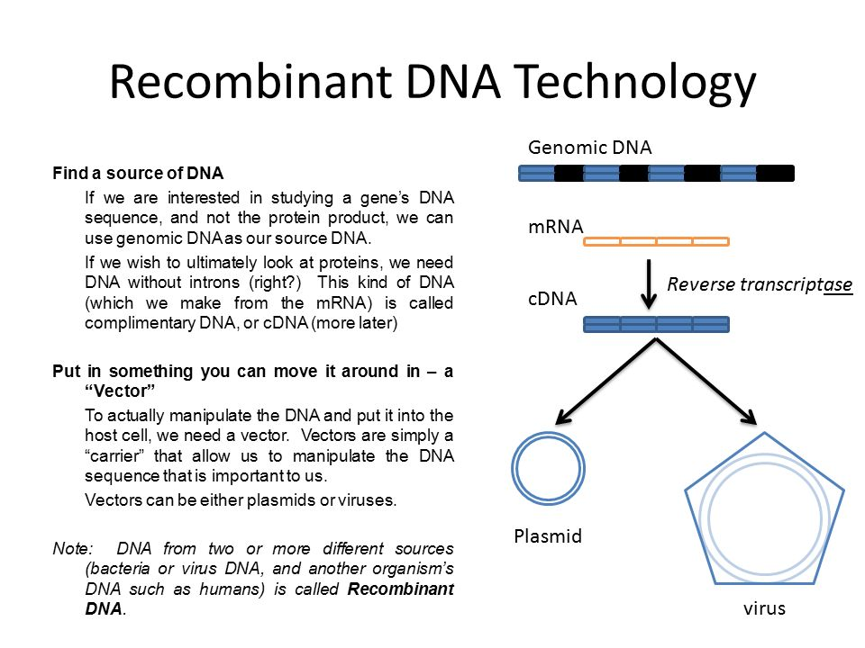 recombinant dna technology Recombinant dna technology includes the techniques developed for the isolation, manipulation and alteration of dna in a test tube, as well as the transfer of this dna .