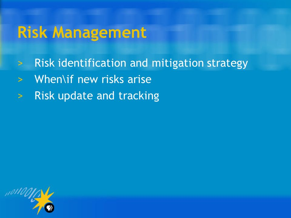 Risk Management Risk identification and mitigation strategy