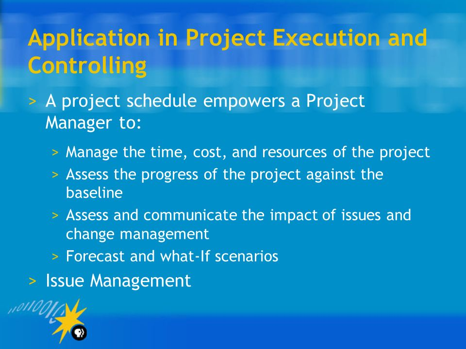 Application in Project Execution and Controlling