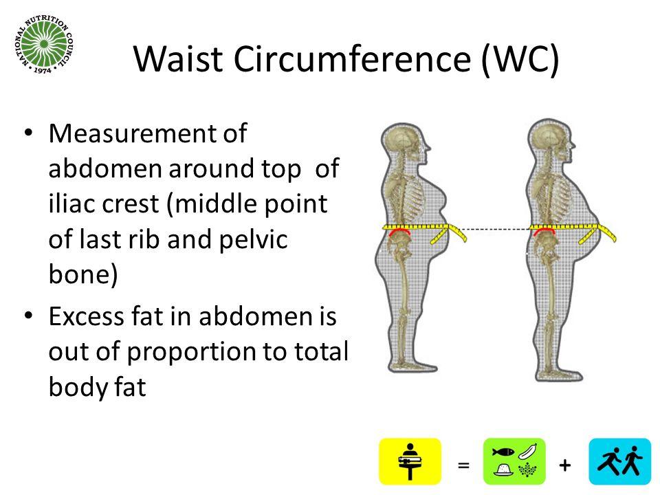 Waist Circumference (WC)
