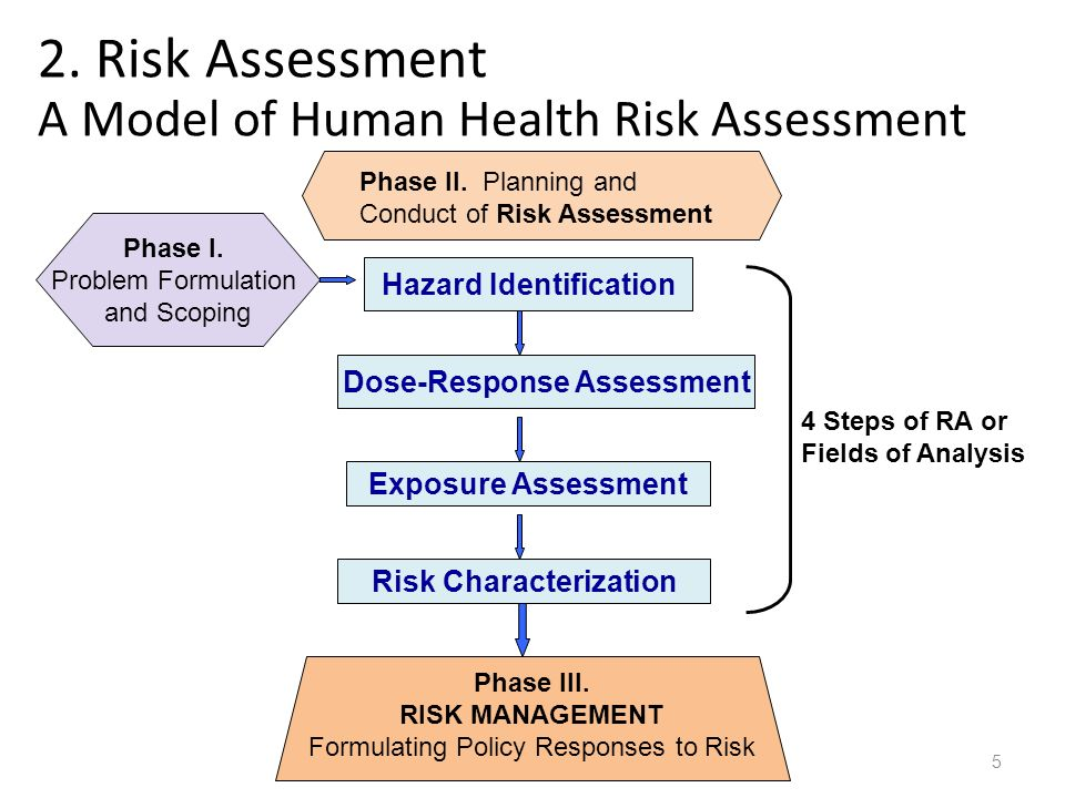environmental risk assessment