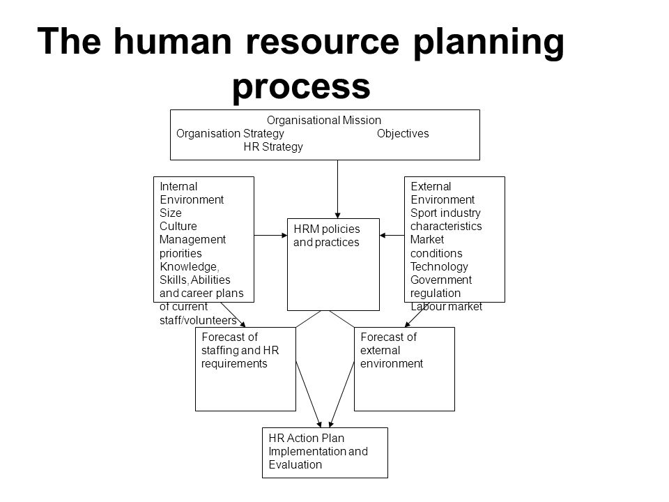 Human Resource Plan Output