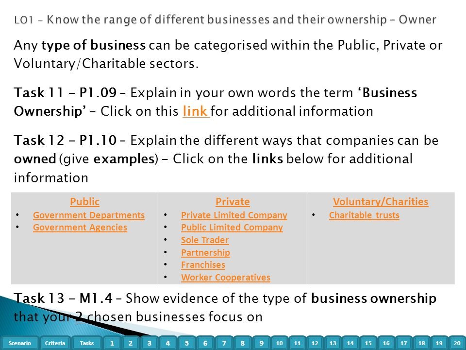 different businesses and their ownerships essay
