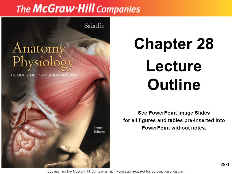 Chapter 28 Lecture Outline - ppt download