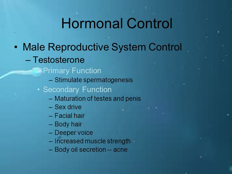 Sex controls what drive hormone